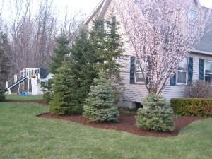 spring landscaping services in nh