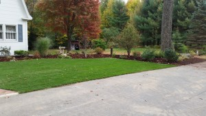 mulch bed landscape